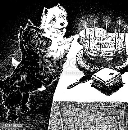 Two Dogs With Birthday Cake