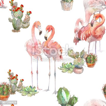 Beautiful pink tropical loving birds flamingos with succulent. Amazing painting for print, poster card