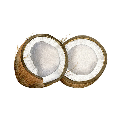 Two halves of cracked coconut isolated on white background