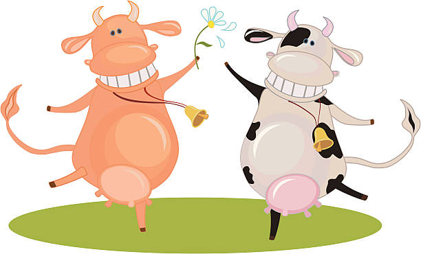 zwei glückliche tanz kühe - lustige kuh bilder stock-grafiken, -clipart, -cartoons und -symbole