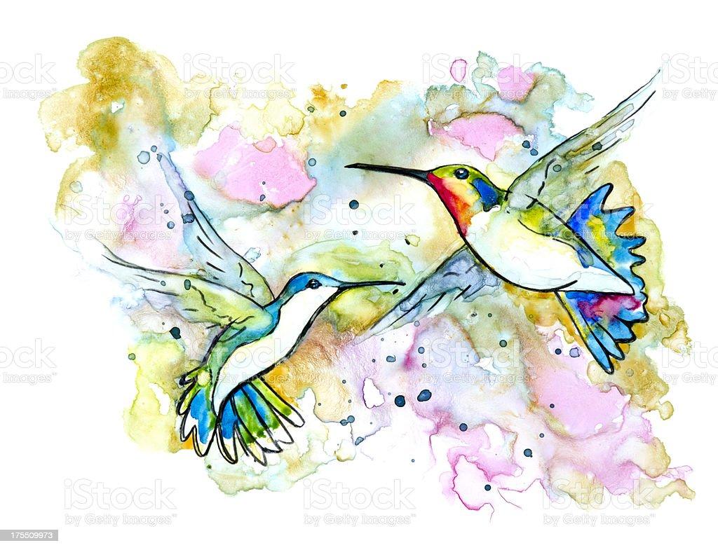 Two Hummingbirds in Flight vector art illustration