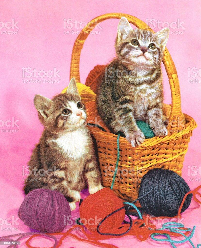 Two Kittens in a Basket of Yarn vector art illustration