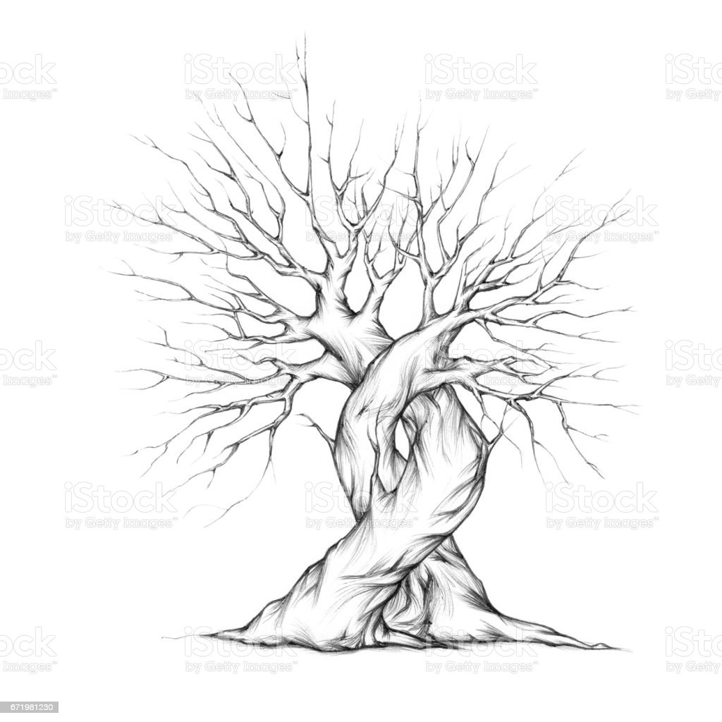 Two tangled trees – Vektorgrafik