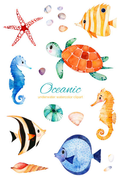 Underwater hand painted multicolored coral fishes.seahorse,turtle Oceanic creature watercolor set. Underwater hand painted multicolored coral fishes.seahorse,turtle etc!Perfect for invitations,party decorations,printable,craft project,greeting cards,blogs,stickers marine life stock illustrations