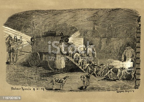 Vintage engraving of Unloading hunting hounds from portable kennel after the hunt, 19th Century. Belvoir kennels 9.50 pm