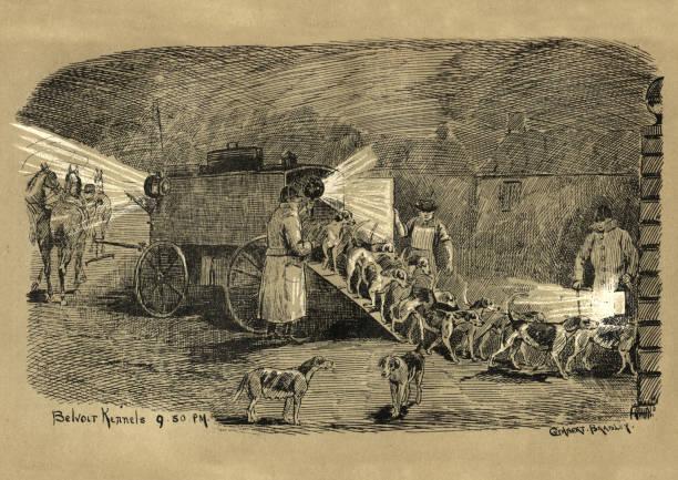 illustrations, cliparts, dessins animés et icônes de déchargement des chiens de chasse du chenil portatif, 19ème siècle - cage animal nuit
