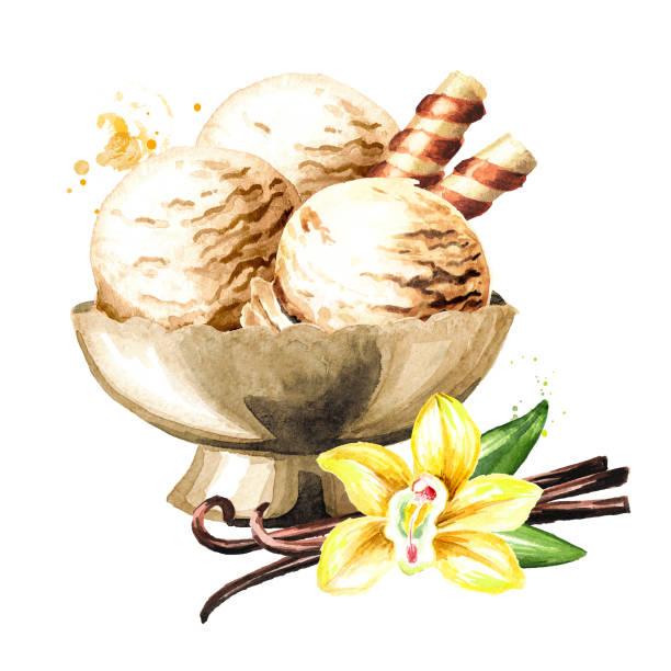 stockillustraties, clipart, cartoons en iconen met vanille-ijs in thr kom. aquarel hand getekende illustratie, geïsoleerd op witte achtergrond - vanille roomijs