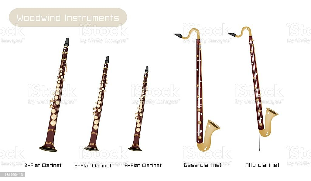 Various Kind of Clarinets Isolated on White Background royalty-free various kind of clarinets isolated on white background stock vector art & more images of arts culture and entertainment