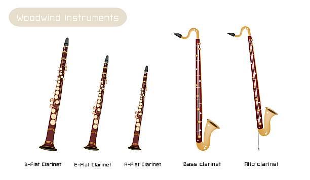 stockillustraties, clipart, cartoons en iconen met various kind of clarinets isolated on white background - basklarinet