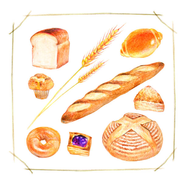 様々なパン - 食パン点のイラスト素材/クリップアート素材/マンガ素材/アイコン素材
