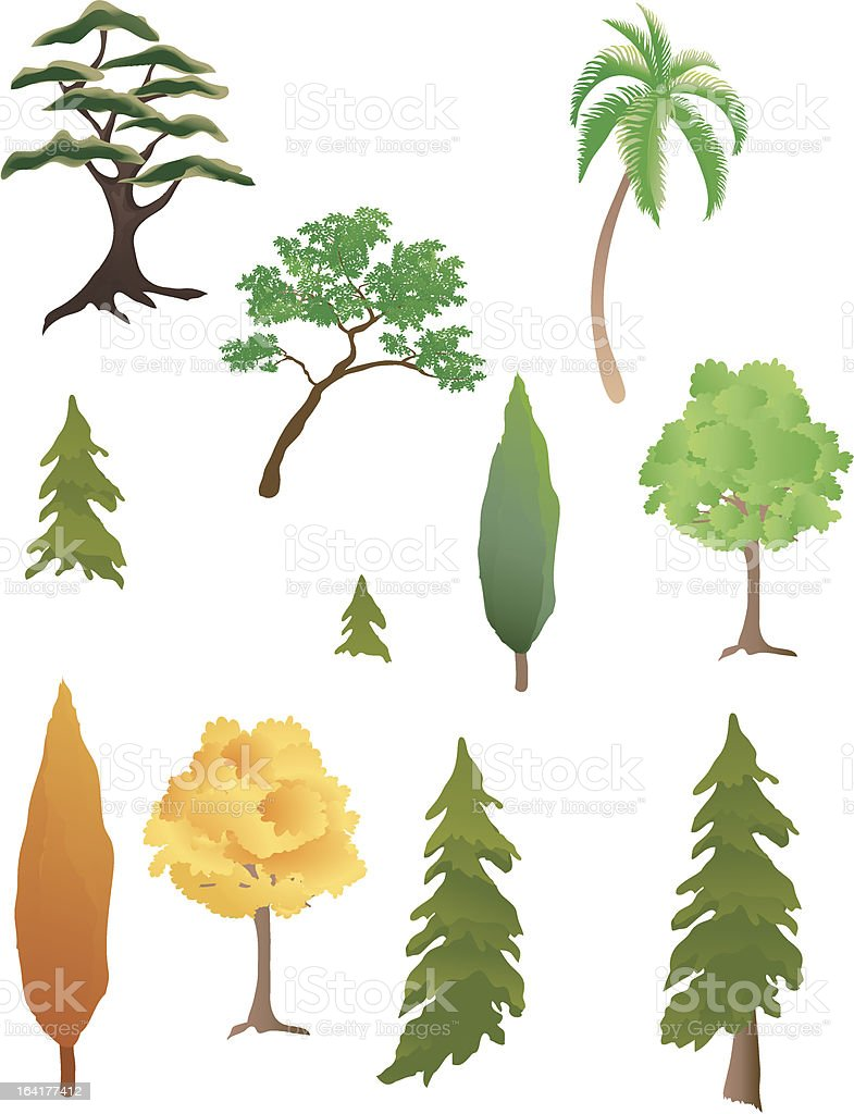 Various trees royalty-free stock vector art