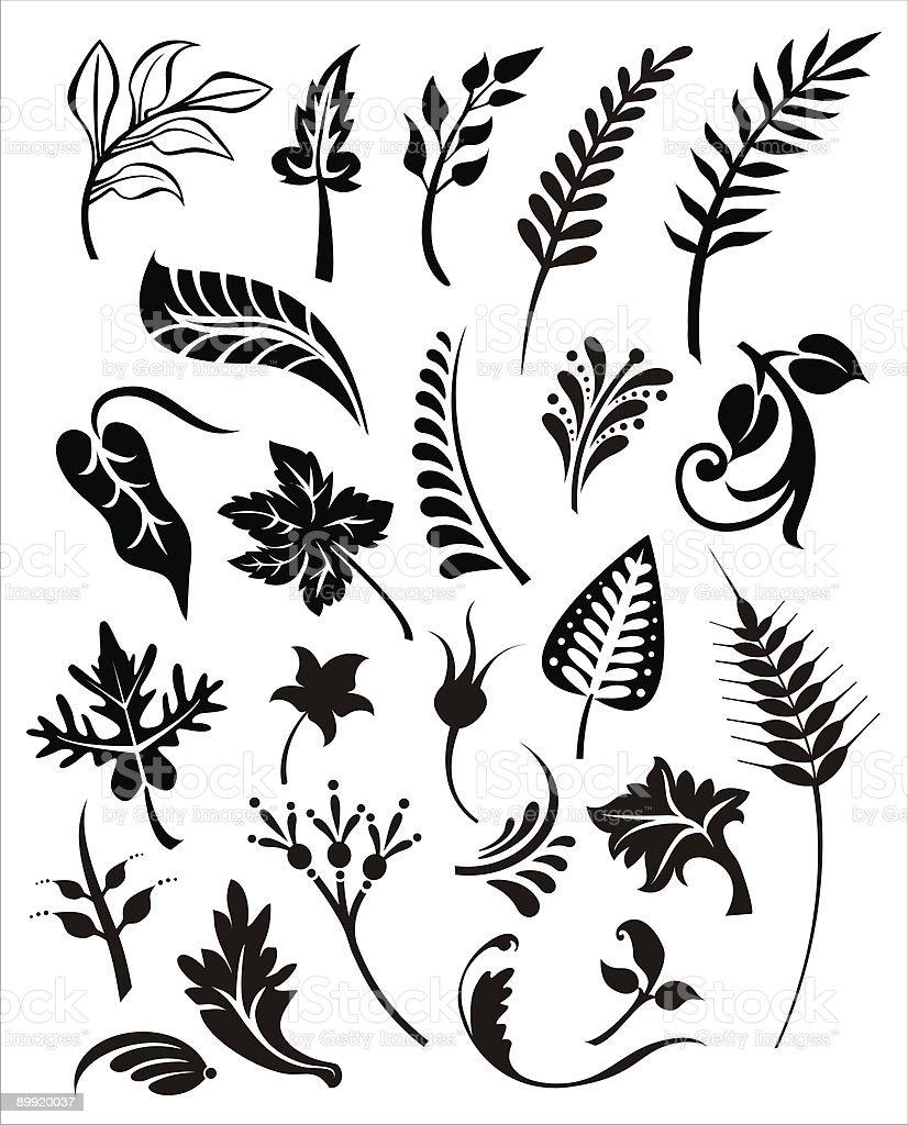 vector foliage set royalty-free stock vector art