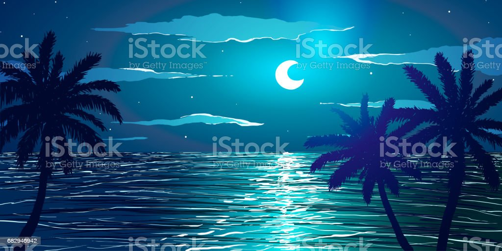 Vector illustration. Beach at night. Palm trees on ocean coast. royalty-free vector illustration beach at night palm trees on ocean coast stock vector art & more images of backgrounds