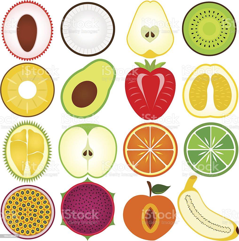 ベクトルイラストのフルーツを半分にカット みずみずしいのベクター