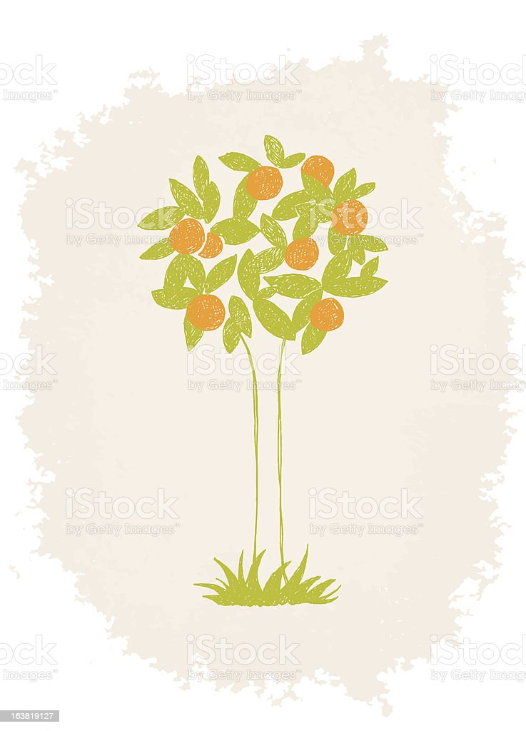 Vector Orange Tree Sketch Stock Illustration - Download ...