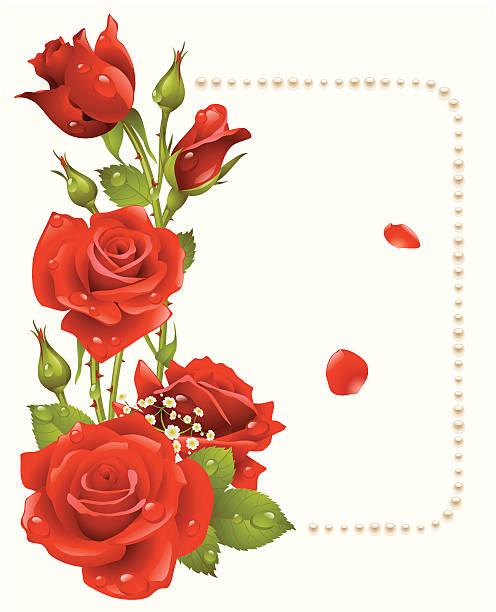 vektor red rose und perlen frame - perlenstrauß stock-grafiken, -clipart, -cartoons und -symbole
