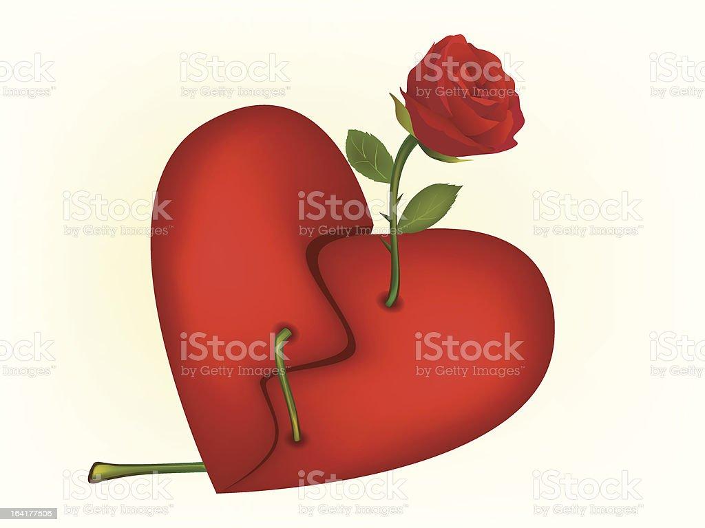 Ilustración de Vector Rosa Roja A Través De Un Corazón Roto y más ...
