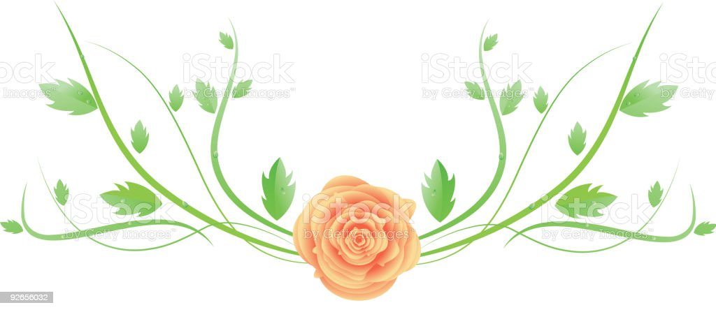 Vector rose with swirl leaves royalty-free vector rose with swirl leaves stock vector art & more images of branch - plant part