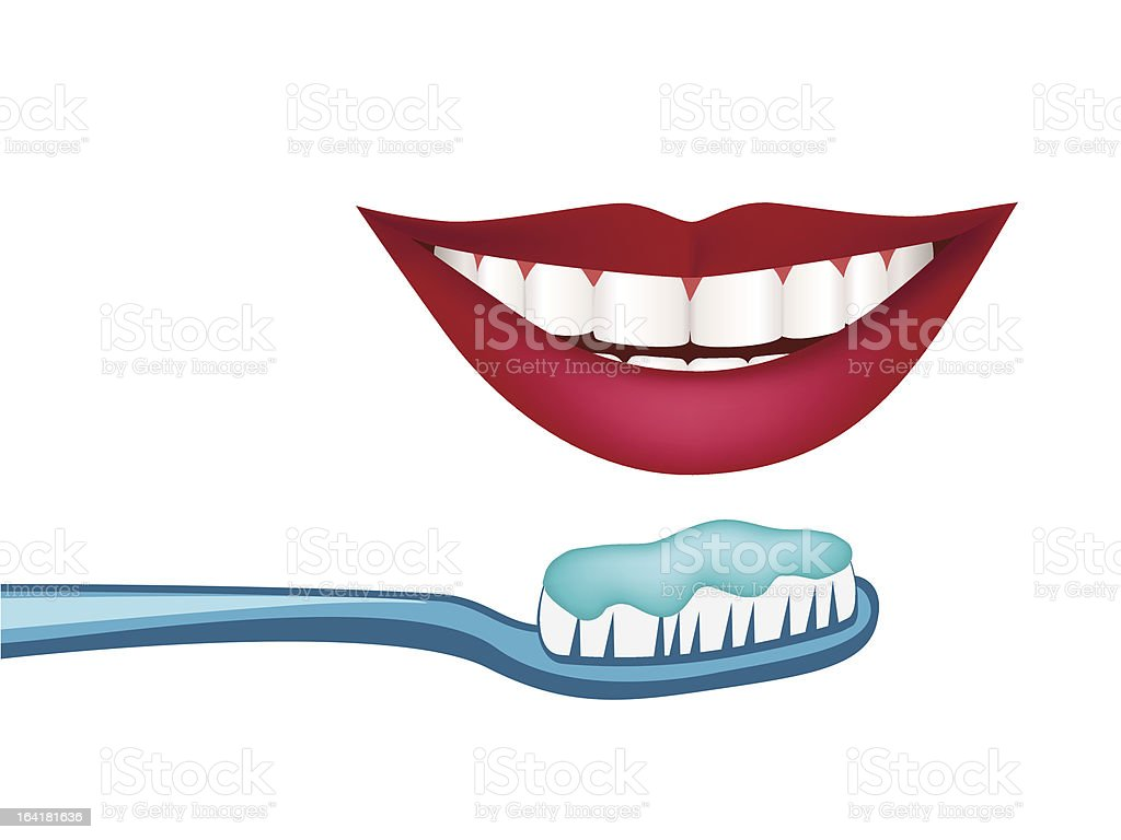 Vector white teeth and healthy smile royalty-free stock vector art