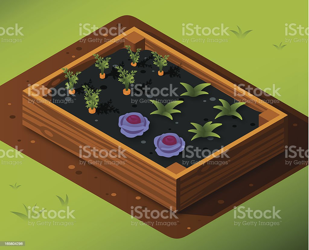 Vegetable Garden Box with Carrots and Cabbage royalty-free stock vector art