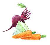 Vegetables and root vegetables. Beets, cabbage, carrots.