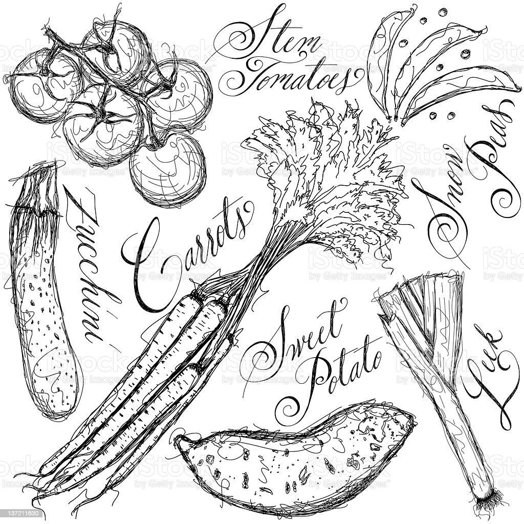 Vegetables sketch royalty-free stock vector art
