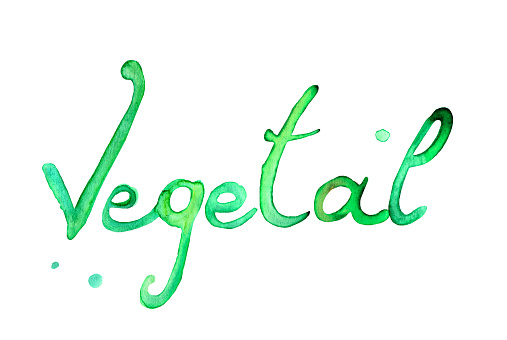 Vegetal text green illustration watercolor. Picture environment
