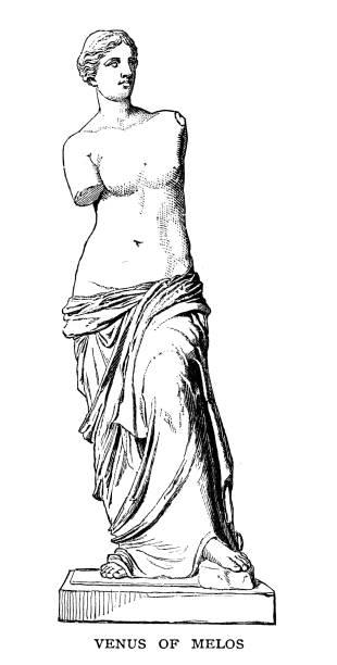 venus of melos - venus stock illustrations