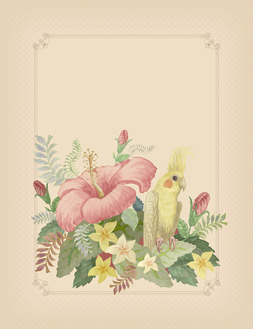 Vertical illustration of a yellow Australian parrot Corella, with  tropical foliage and pink hibiscus flower in golden frame on a light beige background. Jungle leaves, frangipany plant. Wedding invitating, Mother day greeting card, birhday card in vintage style