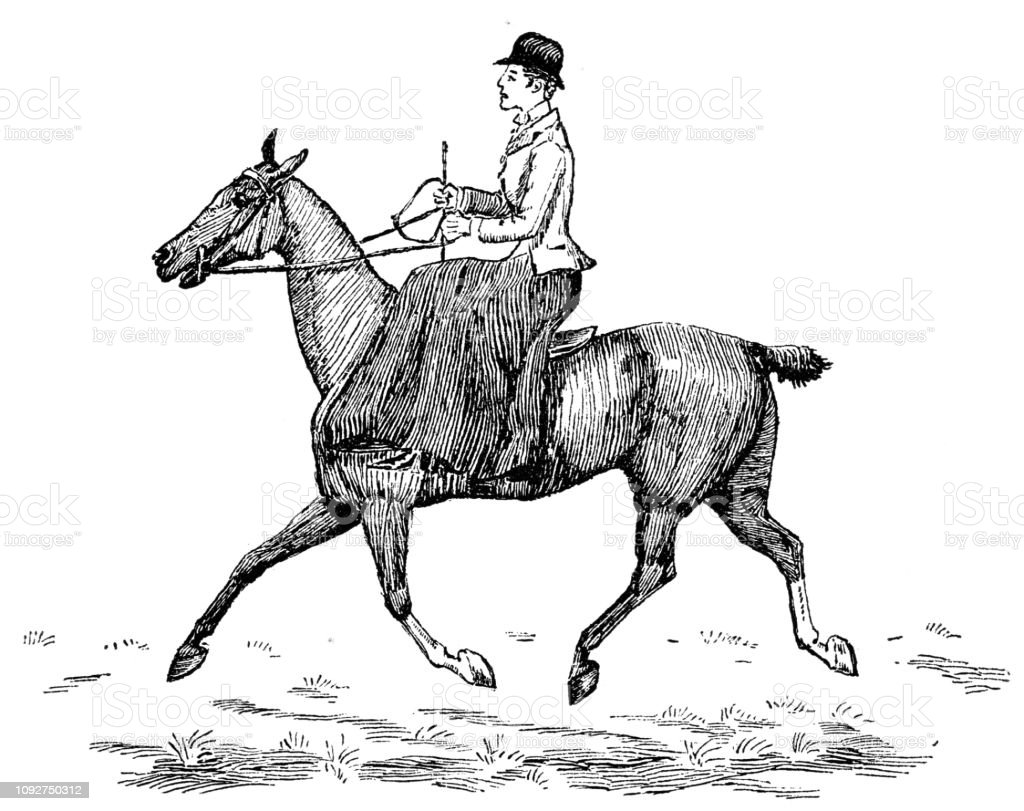 Victorian Black And White Engraving Of A Young Woman Sat Side Saddle Depicting Trotting As It Shouldnt Be 19th Century Women And Horse Riding Equestrian Sport English Illustrated 1892 Stock Illustration