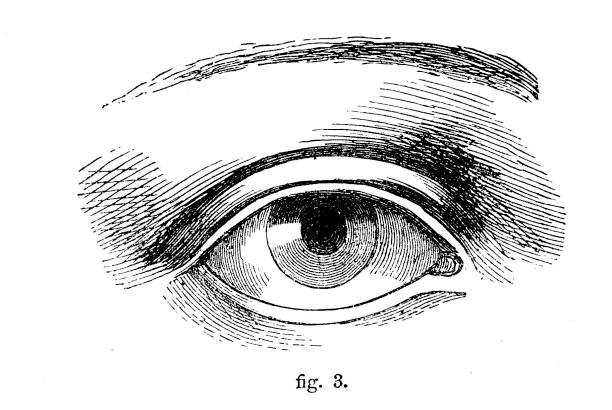 Victorian black and white simple line drawing of an eye showing how to shade;Drawing and shading techniques for anatomy from The Self-Aid Cyclopedia by Robert Scott Burn 1860. vector art illustration