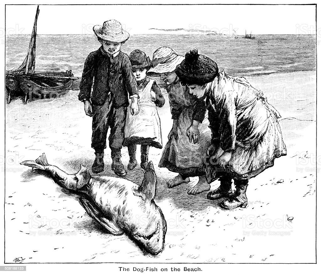 Victorian children looking at a dead dog-fish vector art illustration