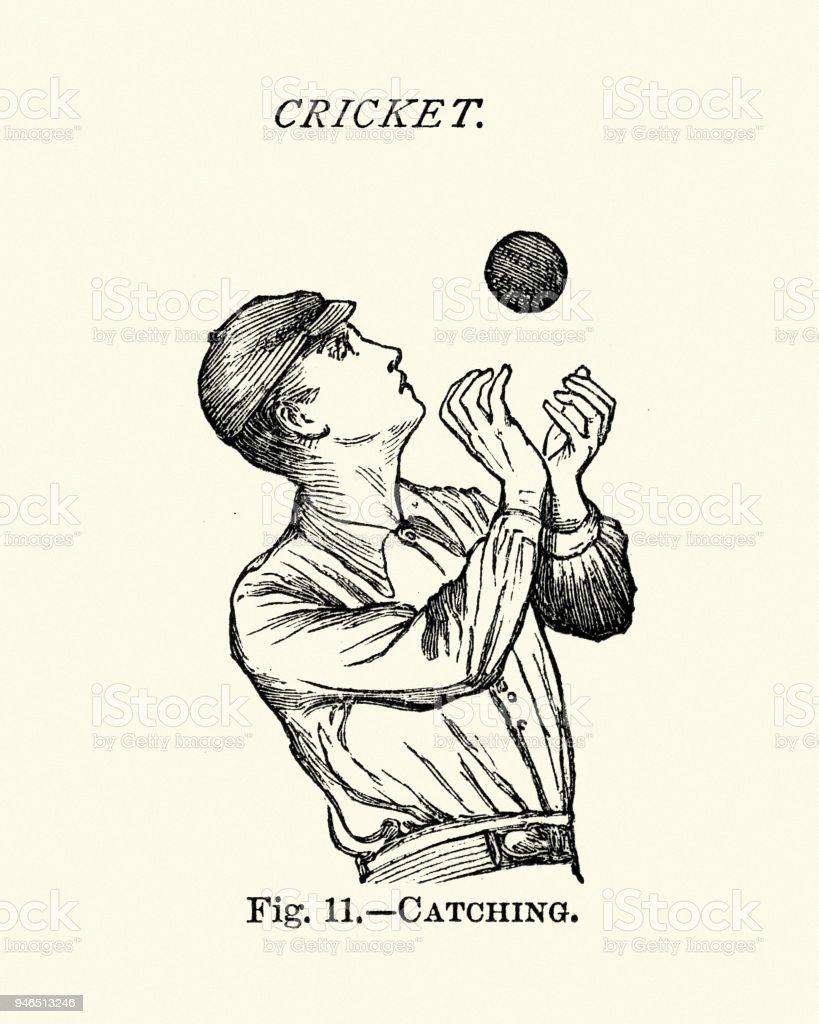 Victorian Cricket Fielder Catching The Ball Stock