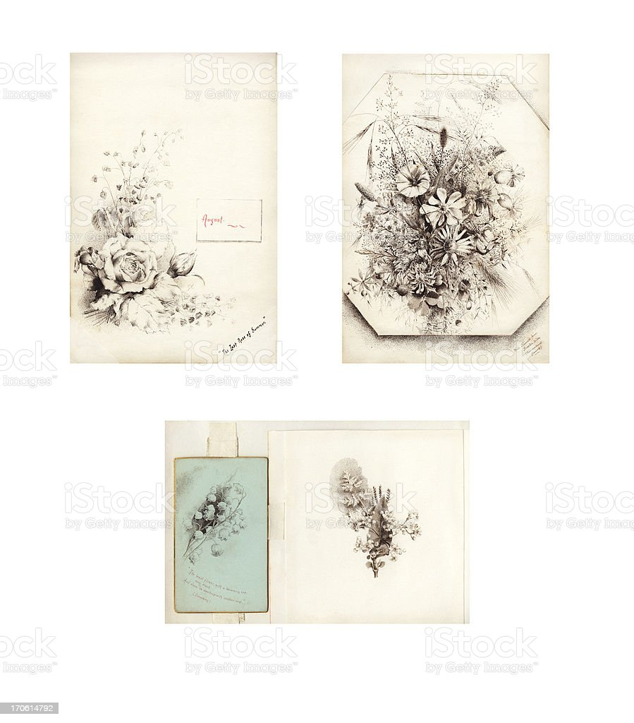 Victorian / Edwardian flower illustrations vector art illustration