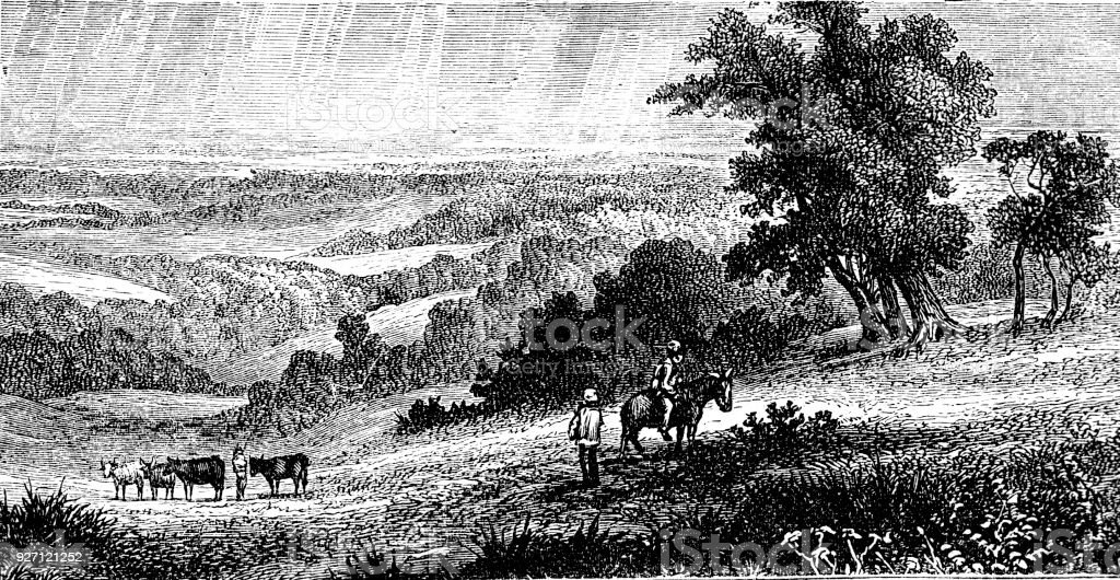 Victorian engraving of a rural landscape depicting fields and farm animals; 19th century countryside 1883 vector art illustration