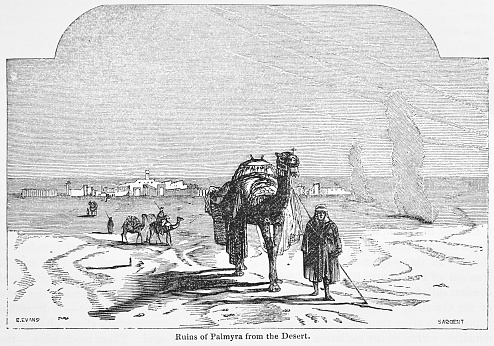 Victorian Engraving Of Palmyra, Syria