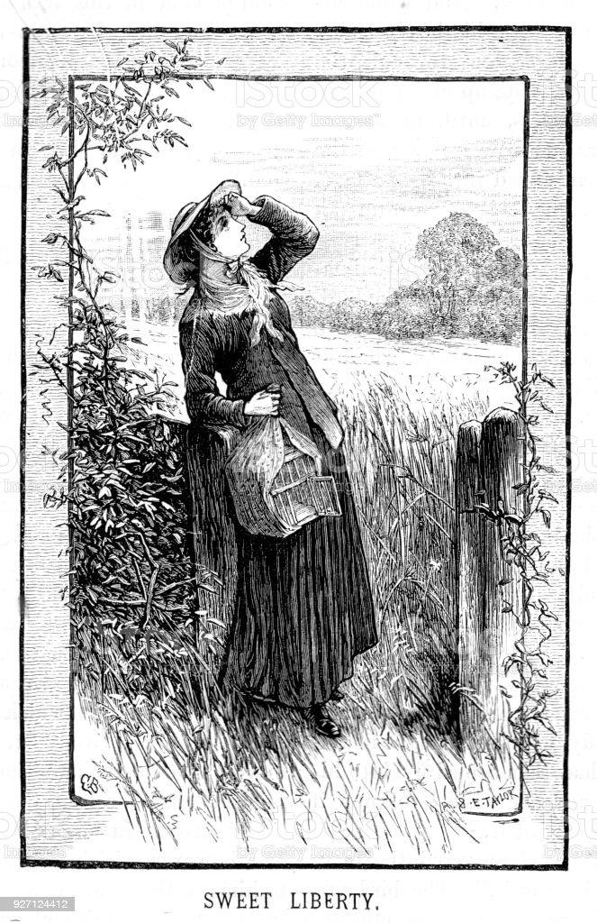 Vetores De Gravura De Victorian Da Doce Liberdade Uma Mulher