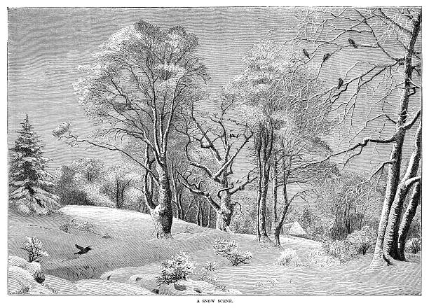 """Victorian illustration - Snow scene An illustration from """"The Family Friend"""" published by S.W. Partridge & Co. (London, 1850). Pretty rural snow scene. 1880 stock illustrations"""