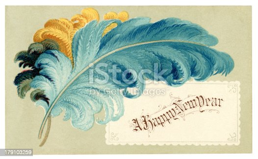 A small Victorian New year card with coloured feathers and a New Year greeting. The card was printed in 1878.