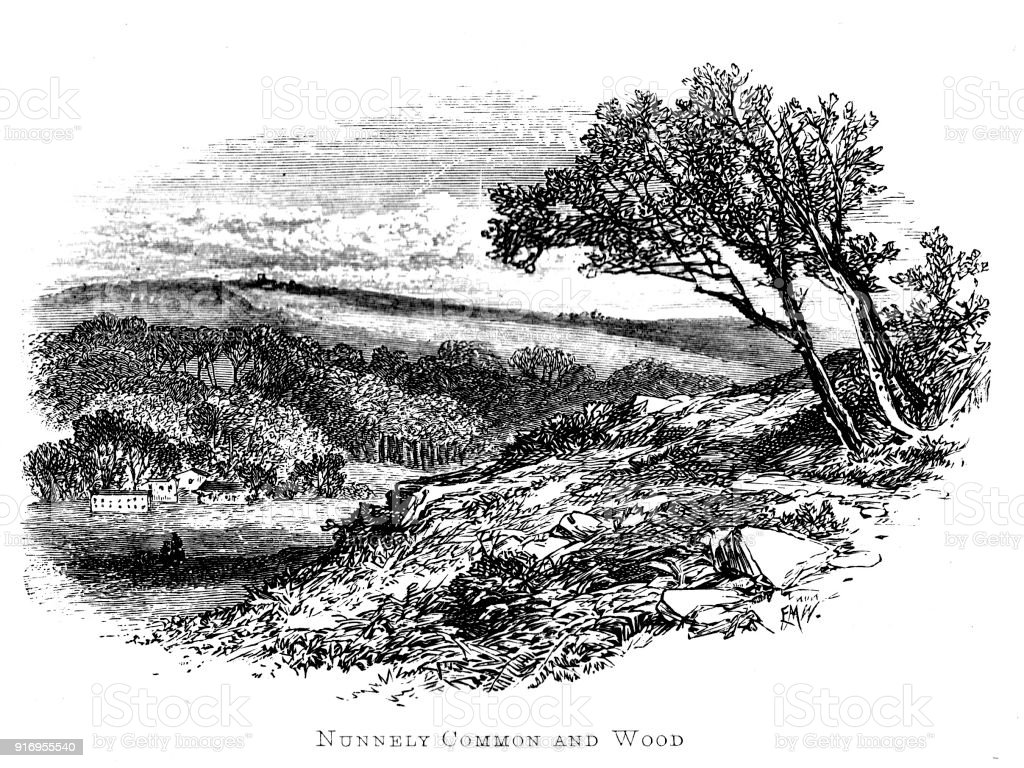 Victorian story illustration;Nunnely Common and Woods from Charlotte Bronte's Shirley; 19th century book engravings vector art illustration
