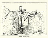 Vintage engraving of a Victorian stuffed buckskin sidesaddle, 19th Century