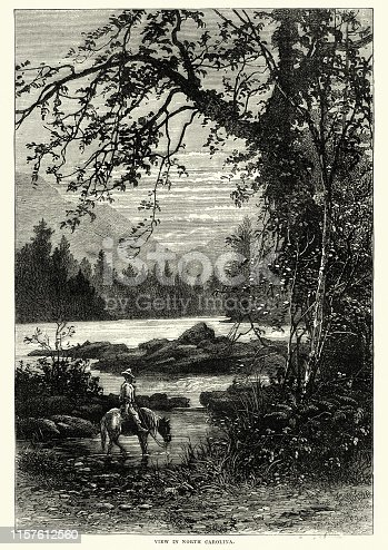 Vintage engraving of a View in North Carolina, USA, 19th Century