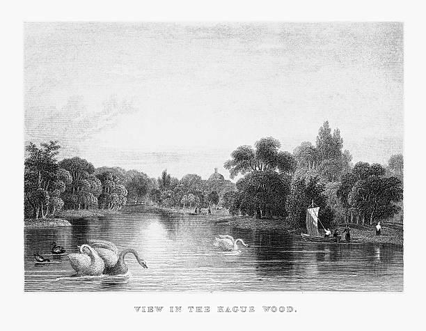 stockillustraties, clipart, cartoons en iconen met view in the hague wood park in rotterdam, netherlands, circa 1887 - den haag