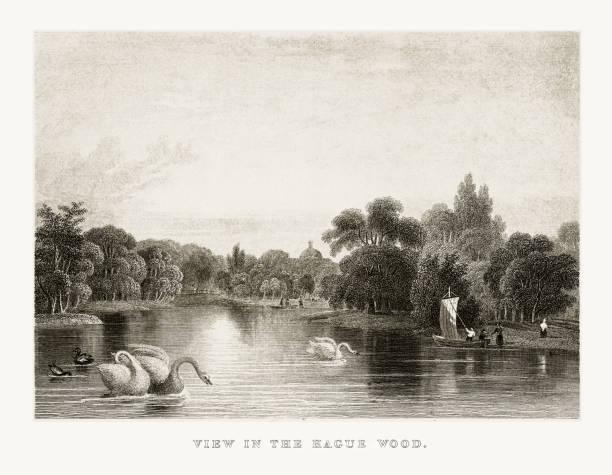 stockillustraties, clipart, cartoons en iconen met weergave in het haagse hout park in rotterdam, nederland, ca. 1887 - den haag