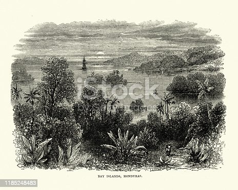 Vintage engraving of a View of Bay Islands, Honduras, 19th Century