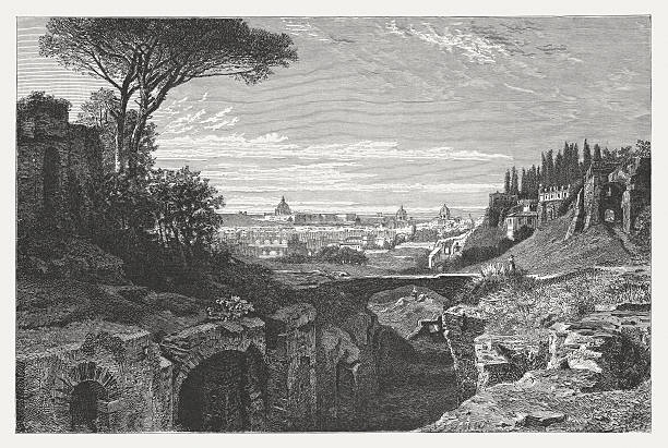 View of Rome from the Palatine Hill, published in 1878 View of Rome from the Palatine Hill with the Ruins of the Imperial Palaces. Wood engraving, published in 1878. palatine hill rome stock illustrations