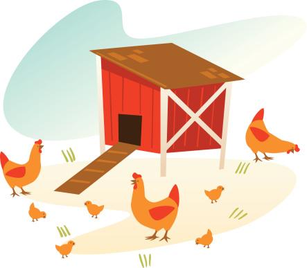vintage chicken coop