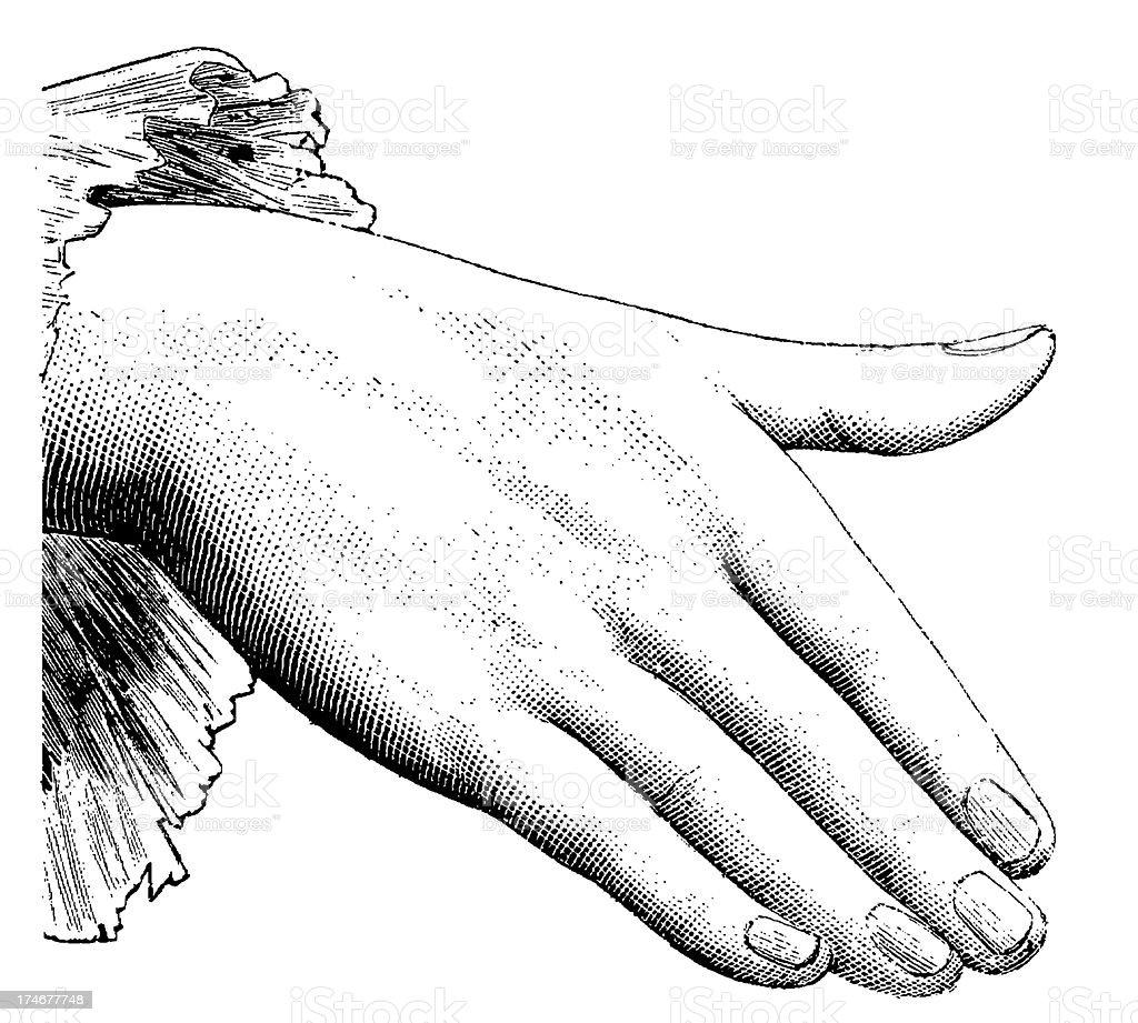 ヴィンテージのクリップアートイラストレーション雌手 19世紀の