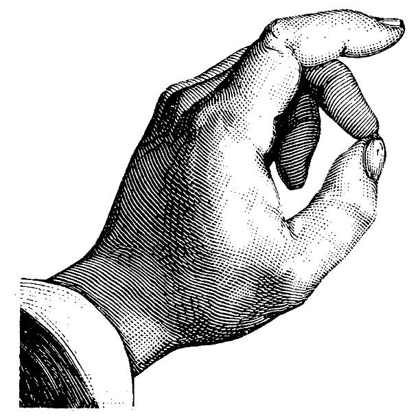 Vintage Clip Art and Illustrations | Human Hand Antique engraving of a human hand, isolated on white. Very high XXXL resolution image scanned at 600 dpi.  obsolete stock illustrations