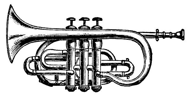 Best Trumpet Illustrations, Royalty-Free Vector Graphics